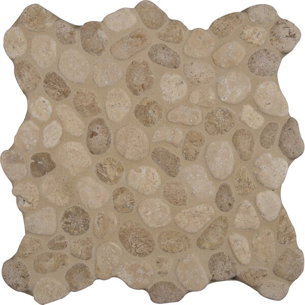 Blend 12 x 12 Marble Pebble Mosaic Tile in Brown by MSI