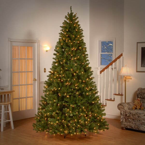 Green Spruce Trees Artificial Christmas Tree With 550 Incandescent Clear White Lights By Beachcrest Home.