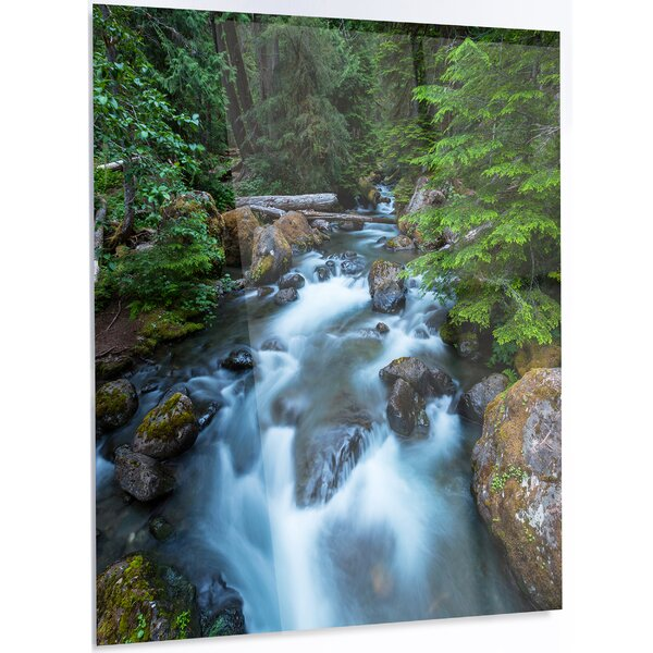 Designart Rushing Water In Forest Creek Photographic Print On Metal Wayfair