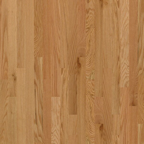 Sawgrass 3-1/4 Solid Red Oak Hardwood Flooring in Seymour by Shaw Floors