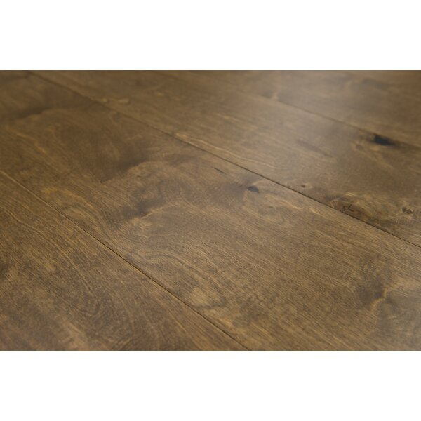 Estonia 6.5 Engineered Birch Hardwood Flooring in Caraway by Branton Flooring Collection