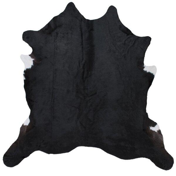 Blosse Hand-Woven Black Indoor Area Rug by Mercer41