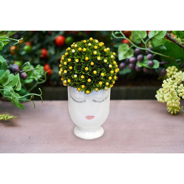 Mini Lemon Topiary by House of Hampton