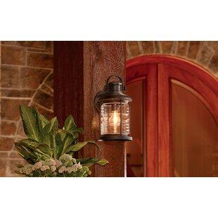 Looking for Ronan Outdoor Wall Lantern By Breakwater Bay
