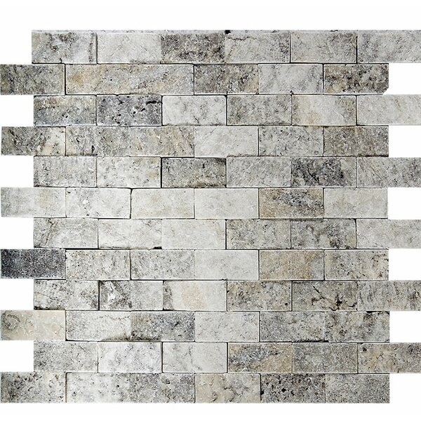 Split Face 1 x 2 Stone Mosaic Tile in Silver by Parvatile