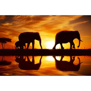 Sunset Walk Framed Photographic Print on Wrapped Canvas by World Menagerie
