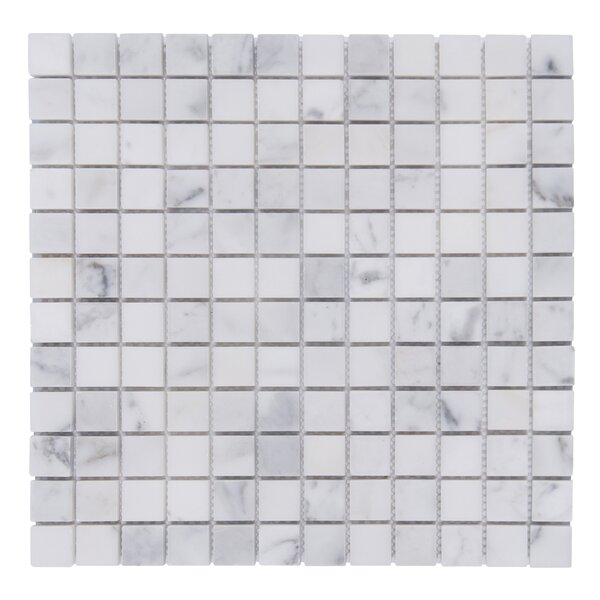 Cloud 12 x 12 Natural Stone and Marble Mosaic Tile