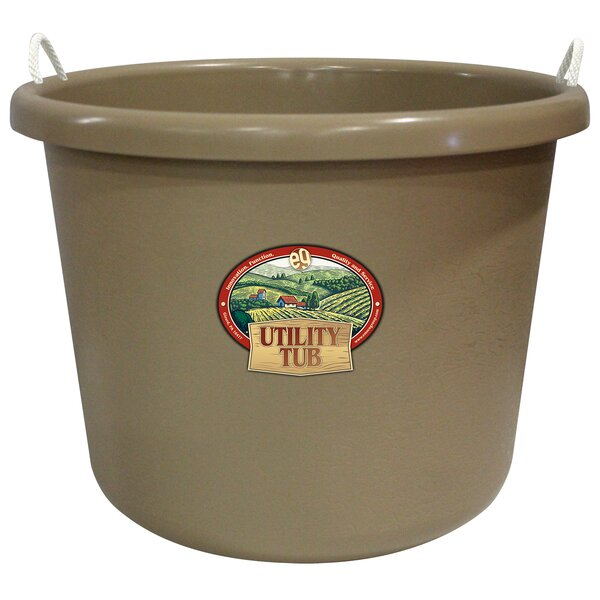 Yoshida Utility Plastic Pot Planter by Symple Stuff