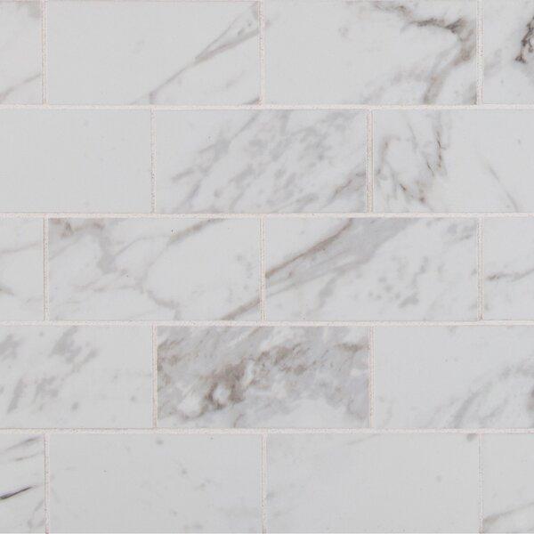 Pietra Carrara 2 x 4 Porcelain Brick Joint Wall & Floor Mosaic Tile