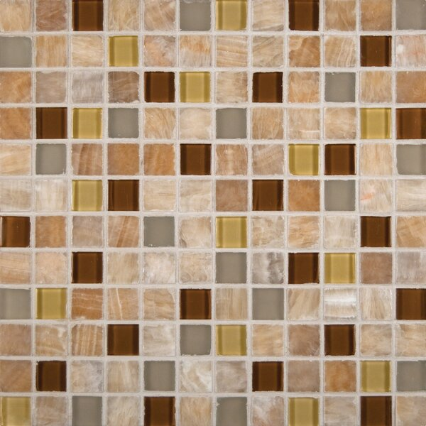 1 x 1 Glass Mosaic Tile in Glossy Honey Caramel by MSI