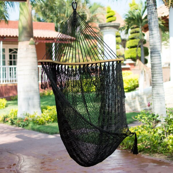 Mayon Nocturnal Dream Nylon Rope Chair Hammock by Bloomsbury Market Bloomsbury Market