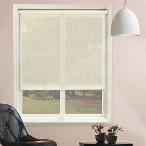 Lydia Sheer Contiuous Loop Roller Shade