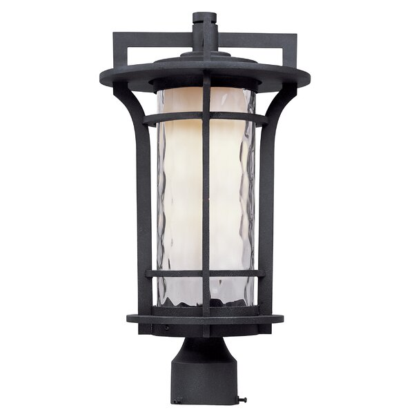 Espitia Outdoor 1-Light LED Lantern Head by Millwood Pines