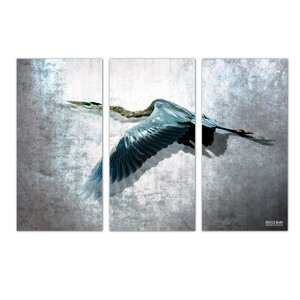 'Heron Flight' by Bruce Bain 3 Piece Photographic Print on Wrapped Canvas Set by Ready2hangart