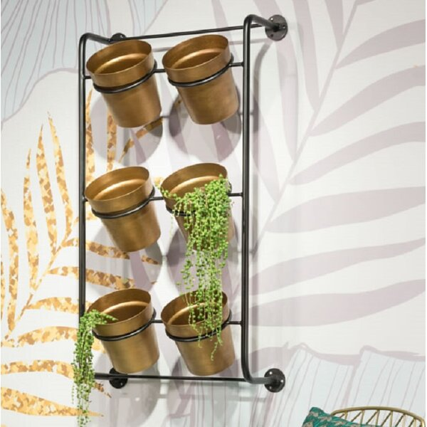 Aghalislone 6 Piece Steel Wall Planter Set by Gracie Oaks
