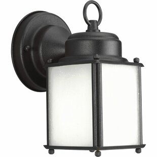 Find the perfect Triplehorn Outdoor  1-Light Wall Lantern By Alcott Hill