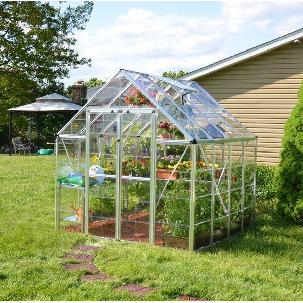 Snap & Grow 8 Ft. W x 8 Ft. D Greenhouse by Palram