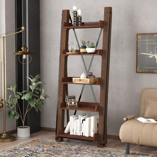 Leandra Ladder Bookcase