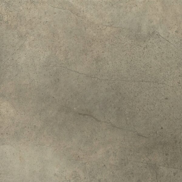 St Moritz II 12 x 12 Porcelain Field Tile in Olive by Emser Tile