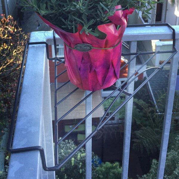 Corner Rail Plant Shelf 2 Piece Bracket Set by Pangaea Home and Garden