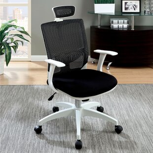 Macungie Mesh Task Chair