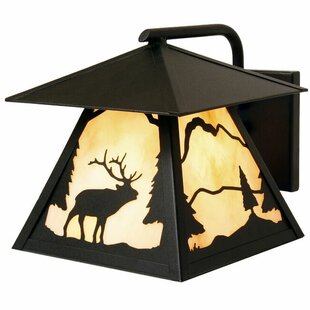 Affordable Timber Ridge 1-Light Outdoor Wall Lantern By Steel Partners