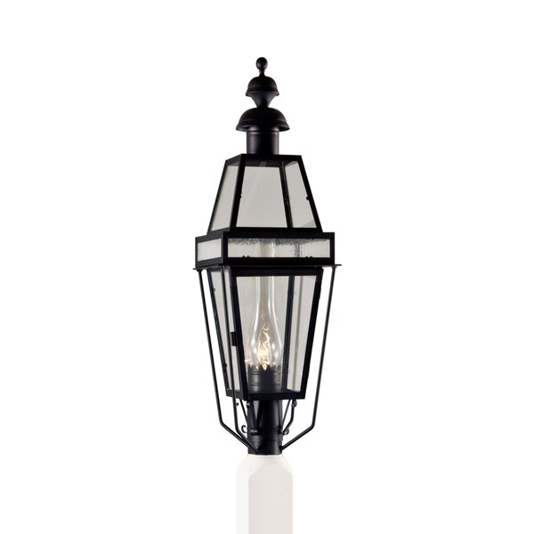 Galvez Outdoor 1-Light Lantern Head by Darby Home Co