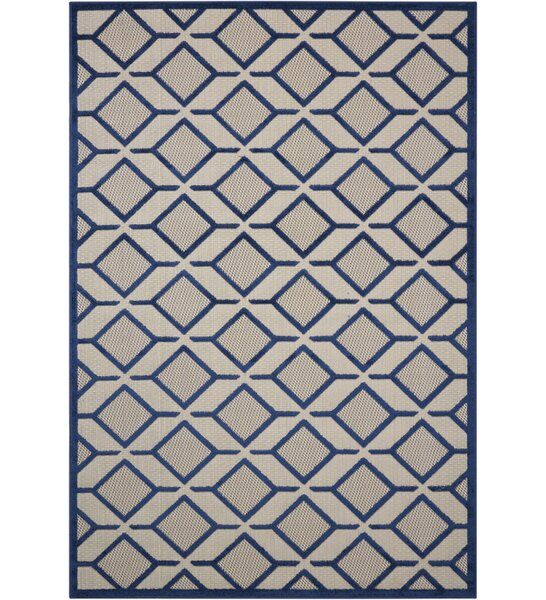Blane Navy Indoor/Outdoor Area Rug by Langley Street