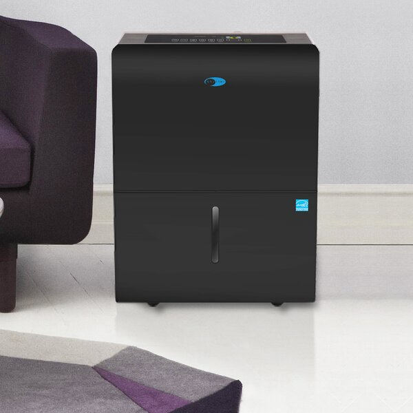 65 Pint Portable Dehumidifier with Casters by Whyn