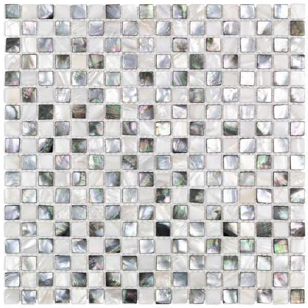 Coule .59 x .59 Glass Pearl Shell Mosaic Tile in Black and White by Splashback Tile