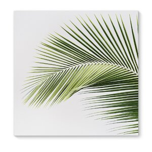 'Palm Beach' Graphic Art on Wrapped Canvas by KAVKA DESIGNS