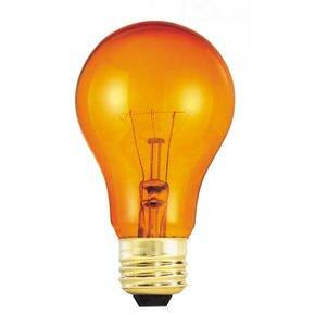 25W Orange 120-Volt Incandescent Light Bulb (Set of 19) by Bulbrite Industries