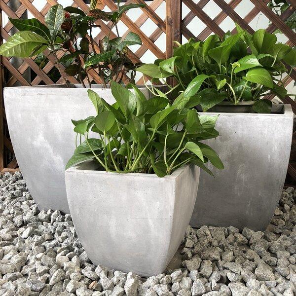 Gamble Carve Corner Square 3-Piece Pot Planter Set by Williston Forge