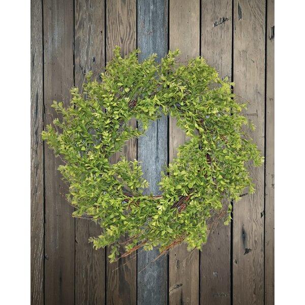 24 Wild Boxwood Wreath by One Allium Way