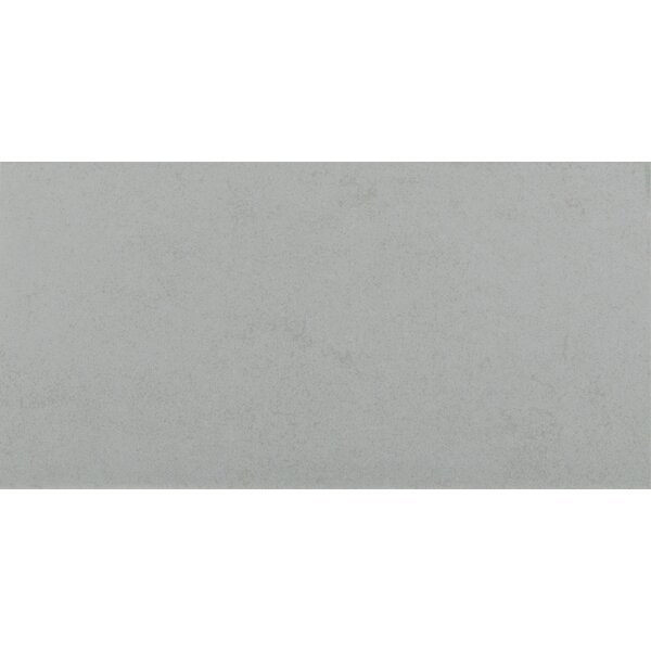 Glacier 24 x 48 Porcelain Field Tile in Gray by MSI