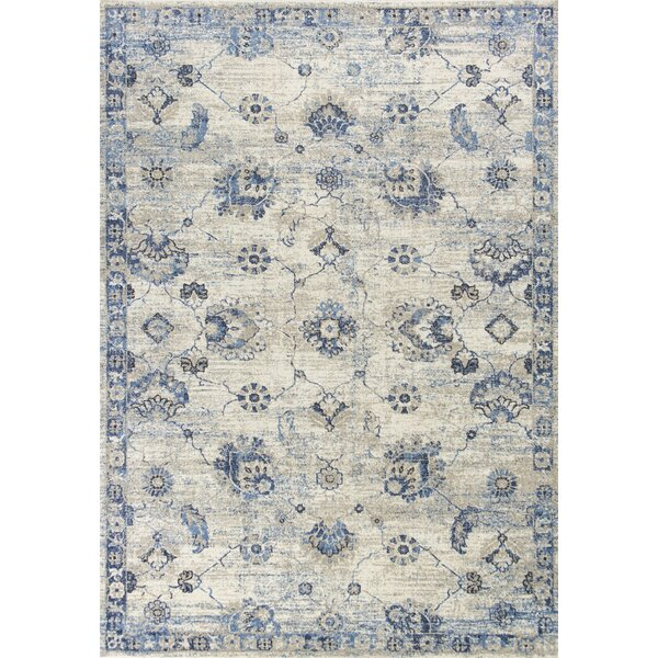 Diane Gray/Blue Area Rug by Charlton Home
