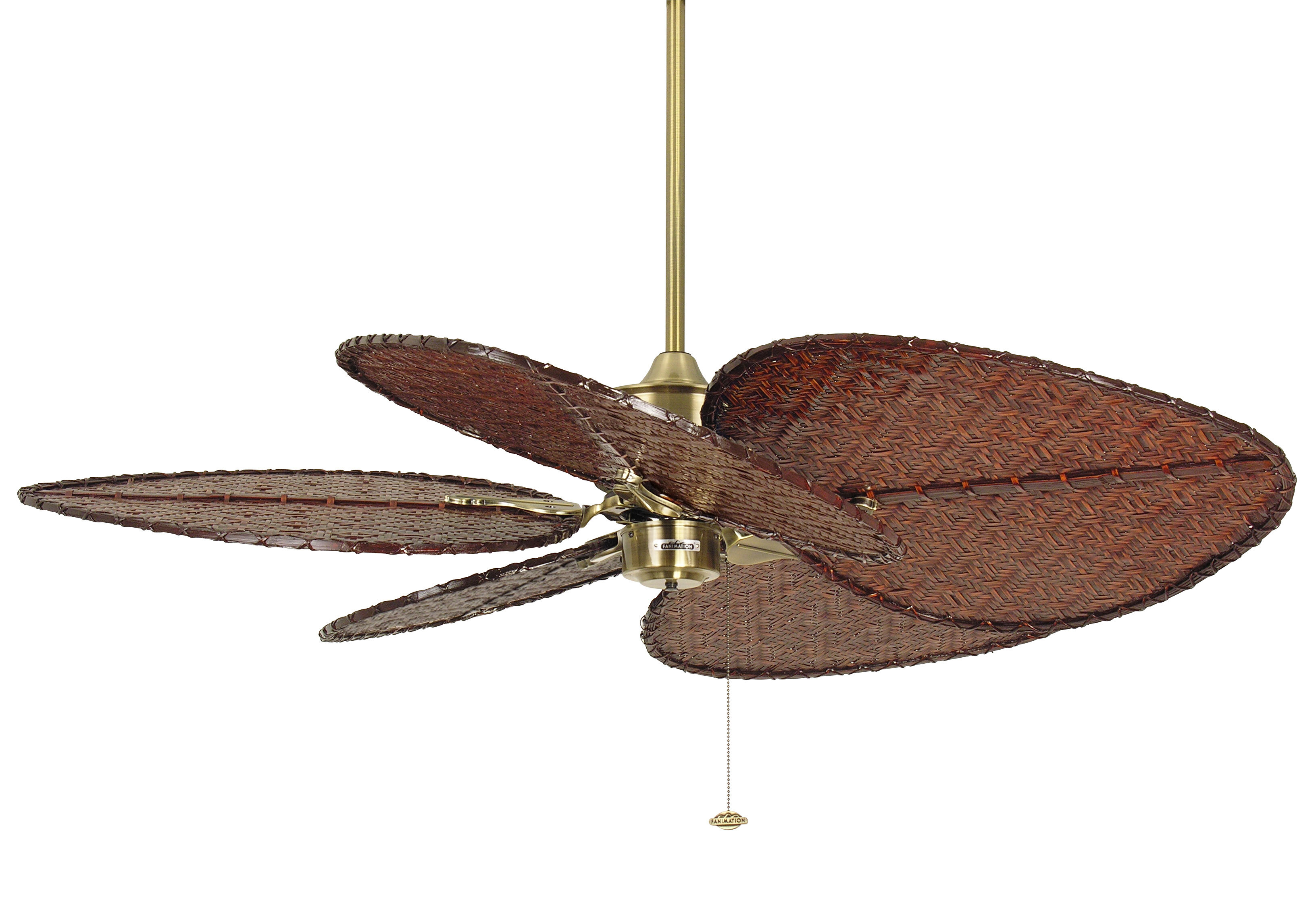 maine size fan glamorous draft off infinity war lowes turn full nfl home images design depot ceiling fans light at hunter marjory kit stoneman suspect will not marvellous police avengers of inch parts douglas