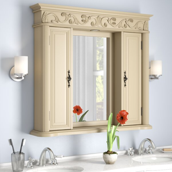 Alexis Surface Mount Framed Medicine Cabinet with 6 Shelves and Lighting [Astoria Grand - ARGD1247]