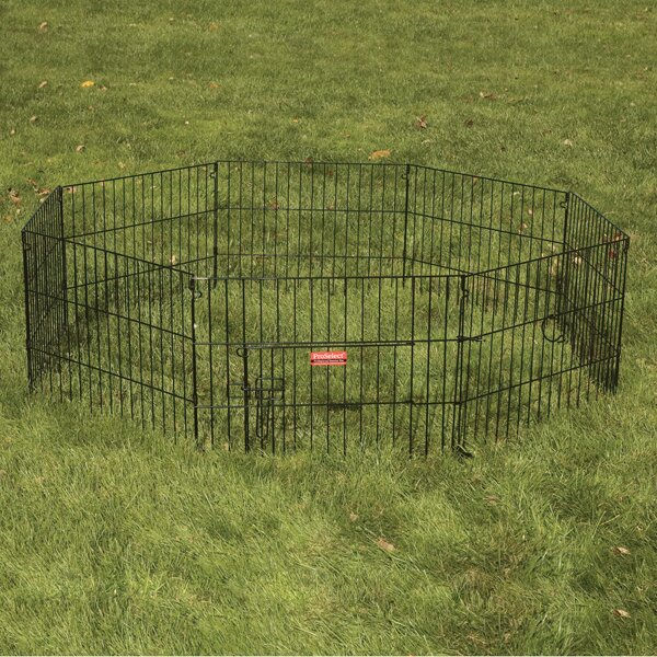 Everlasting Exercise Dog Pen with Door by ProSelect