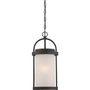 Best Reviews Carrie 1-Light Outdoor Pendant By Darby Home Co