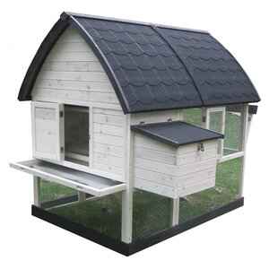 Coops & Feathersu2122 Country Chicken Coop