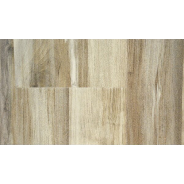 Cottage 6.5 x 48 x 12mm Canadian Maple Laminate Flooring in Alpine Smoke by All American Hardwood