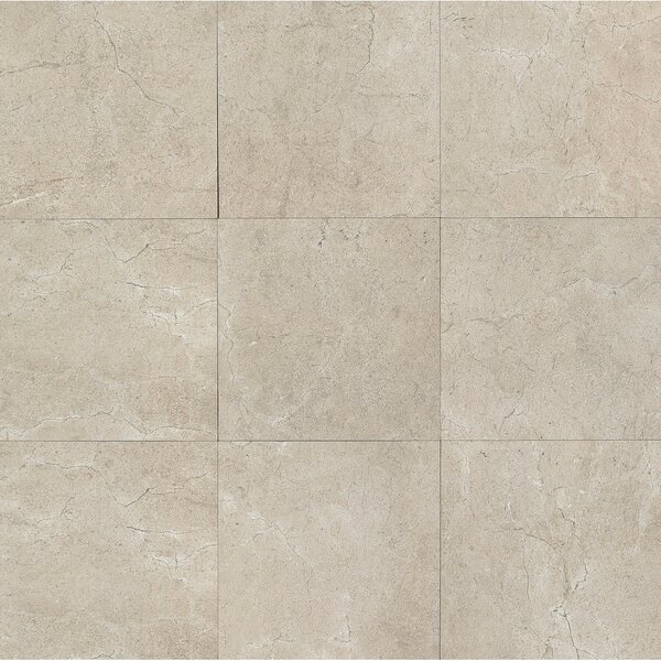 El Dorado 24 x 24 Porcelain Field Tile in Rock Polished by Grayson Martin