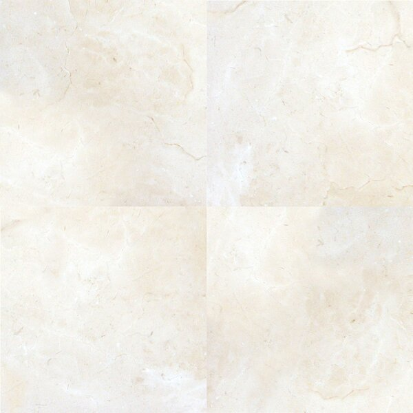 Pietra Marfil 18 x 18 Porcelain Field Tile in Beige by MSI
