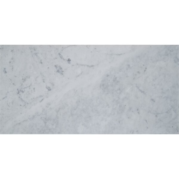 Carrara 12 x 24 Natural Stone Field Tile in Gray by MSI