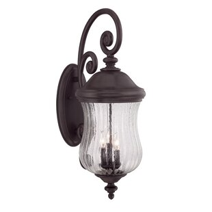 Bargain Berwyck 3-Light Outdoor Wall Lantern By Fleur De Lis Living