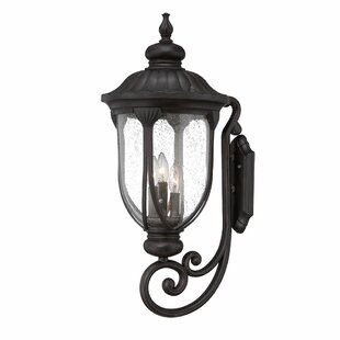 Angie 3-Light Outdoor Sconce By Fleur De Lis Living Outdoor Lighting