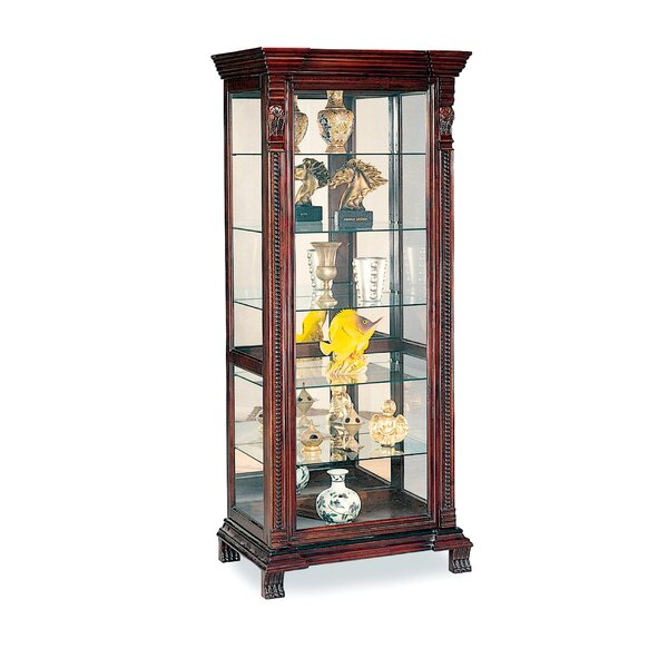 Asotin Lighted Curio Cabinet by Wildon Home Wildon Home®