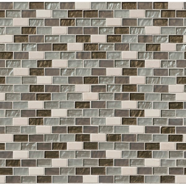 1 x 2 Glass and Stone Subway Tile in Beige by MSI