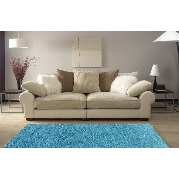 Armina Shag Turquoise Area Rug by Ebern Designs